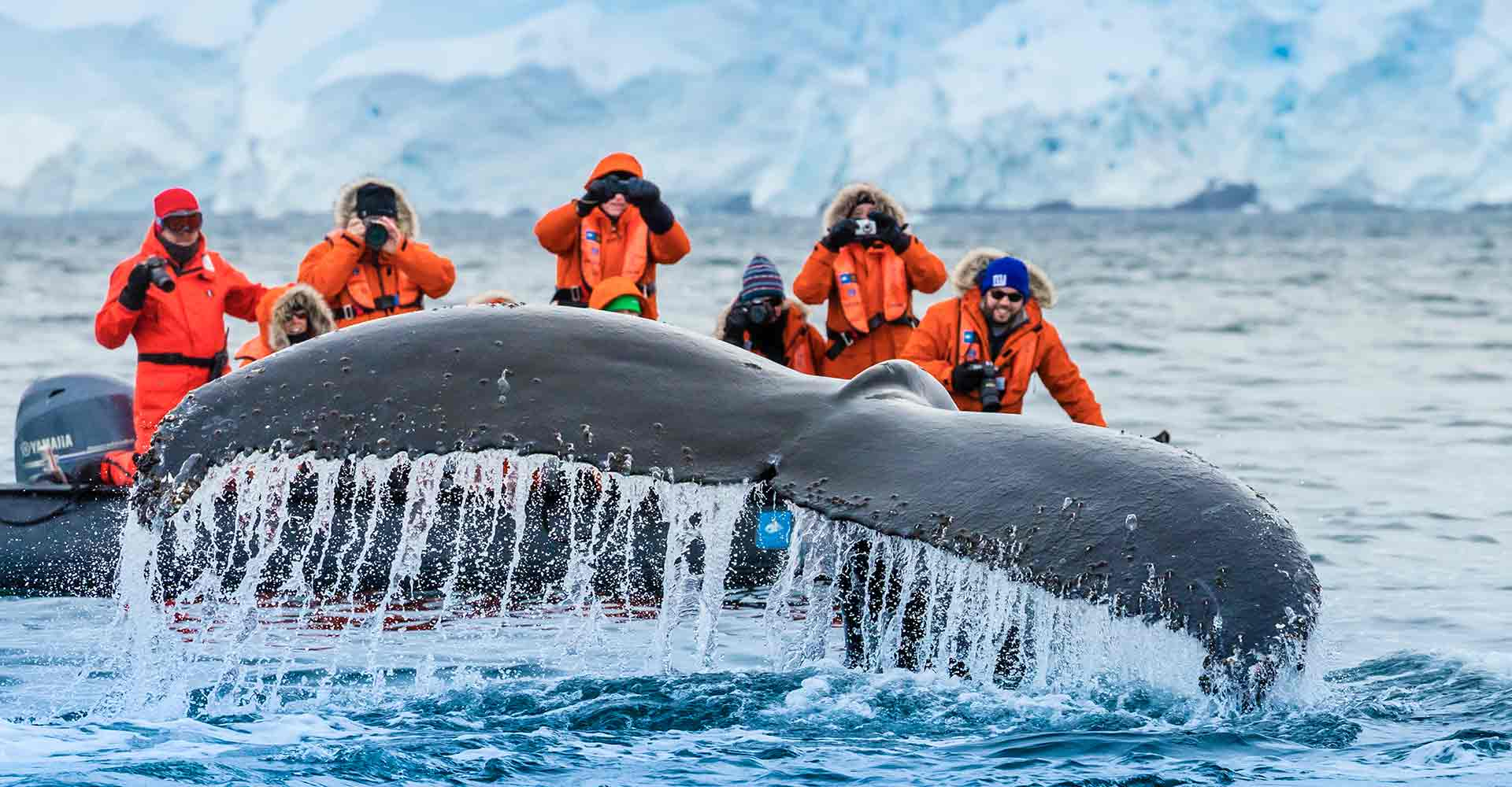 03_antarctic-experience-page-carousel_138_hopkins_ant09_16366
