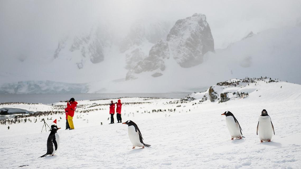 antarctic_peninsula_1-13