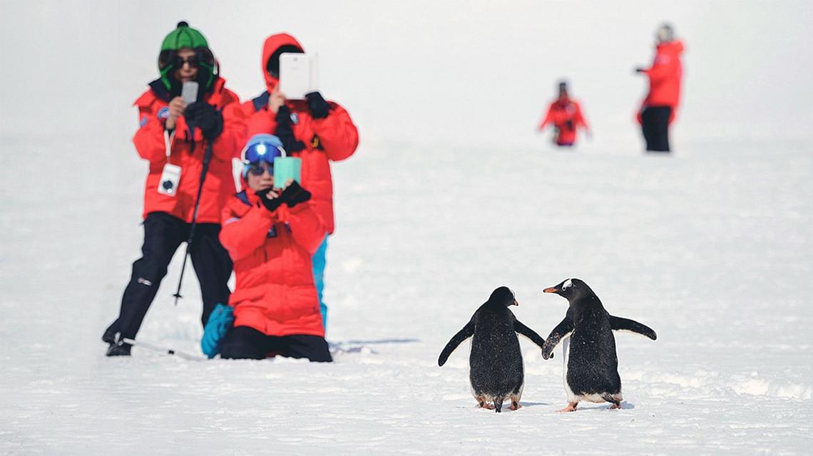 antarctic_peninsula_1-5